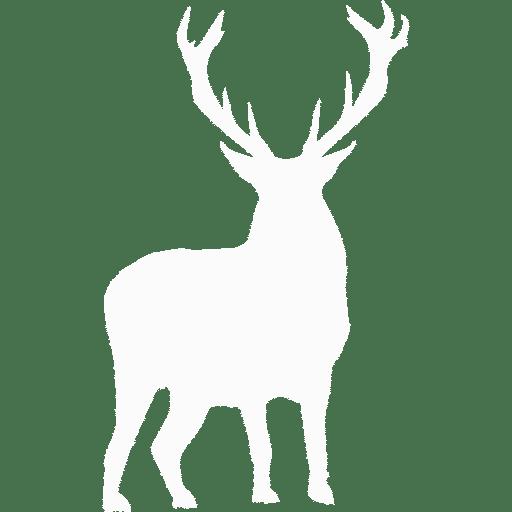 deer-wh